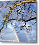 White Oak And Double Rainbow Metal Print