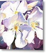 White Oleander Metal Print