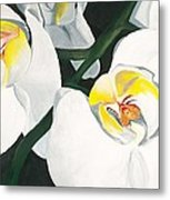 White Orchid Metal Print