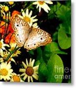 White Peacock Butterfly I I I Metal Print