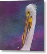 White Pelican Metal Print by Hazel Billingsley