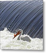 White Pelican Over The Dam Metal Print