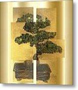 White Pine Bonsai Metal Print