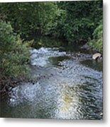 White Plains Stream Metal Print