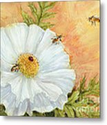 White Poppy And Bees Metal Print