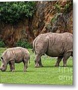 White Rhino 11 Metal Print