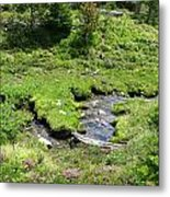 White River Pass Stream Second View Metal Print