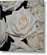 White Rose 1 Metal Print