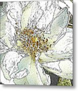 White Rose Abstract Metal Print