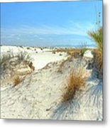 White Sands Foliage Metal Print by John Kelly