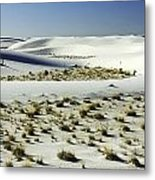White Sands National Monument-098 Metal Print