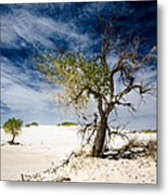 White Sands National Monument #1 Metal Print