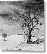 White Sands National Monument 1 Light Mono Metal Print