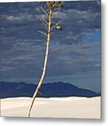 White Sands National Monument 2 White Sands New Mexico Metal Print