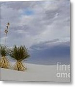 White Sands New Mexico Yucca Plants Metal Print