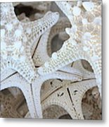 White Starfish Metal Print by Carol Groenen