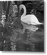 White Swan In Black And White II Metal Print