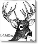 White-tailed Deer Head Metal Print