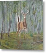 White-tailed Deer - Impressionistic Metal Print