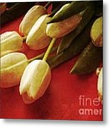 White Tulips Over Red Metal Print
