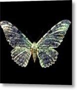 White Witch Moth Metal Print