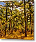 Whitebog Village Woods In New Jersey  Metal Print