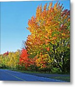 Whitefish Bay Scenic Byway Metal Print