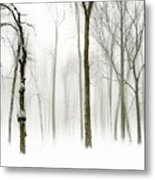 Whiter Shade Of Pale Metal Print