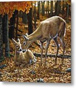 Whitetail Deer - Autumn Innocence 2 Metal Print