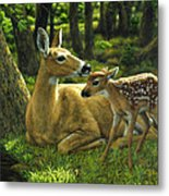 Whitetail Deer - First Spring Metal Print
