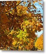 Whiting New Jersey Metal Print