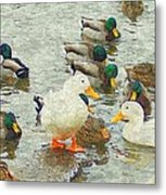 Who S On First Base Metal Print by Rosemarie E Seppala