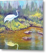 Whooping Crane - Searching For Frogs Metal Print