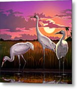 Whooping Cranes Tropical Florida Everglades Sunset Birds Landscape Scene Purple Pink Print Metal Print