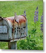 Whose Mailbox This Is I Think I Know Metal Print