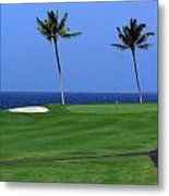 Why Would You Golf In Hawaii Metal Print