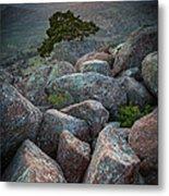 Wichita Mountains Metal Print