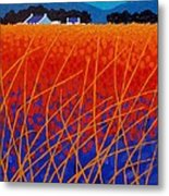 Wicklow Meadow Metal Print by John  Nolan
