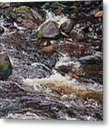 Wicklow River # 1 Metal Print