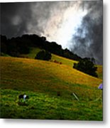 Wilbur The Pig Goes Home - 5d21059 Metal Print by Wingsdomain Art and Photography