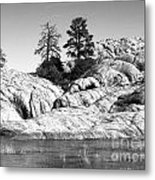 Willow Lake Number One Bw Metal Print by Heather Kirk