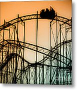 Wild At Night Metal Print by Colleen Kammerer