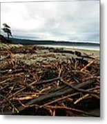 Wild Beach New Zealand Metal Print