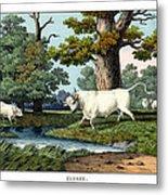 Wild Cattle Of Britain Metal Print