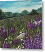 Wild Flower Field Metal Print