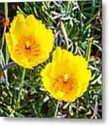 Wild Flowers 2 Metal Print