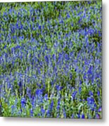 Wild Flowers Blanket Metal Print