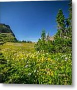Wild Flowers Glacier National Paintedpark   Metal Print by Rich Franco