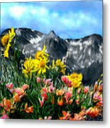 Wild Flowers In The Moutains Metal Print