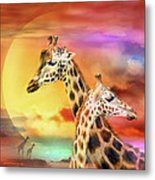Wild Generations - Giraffes  Metal Print